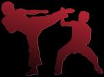 Las diez artes marciales más letales.