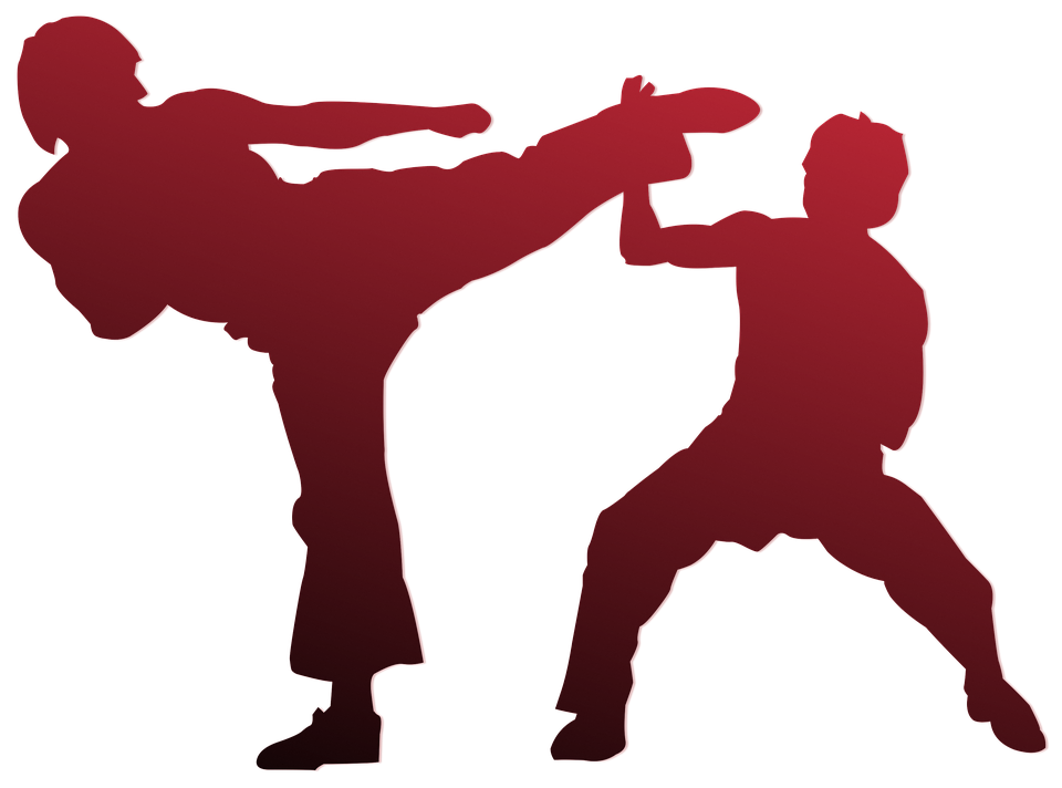 Karate, Silueta, Contorno, El Deporte, Marcial